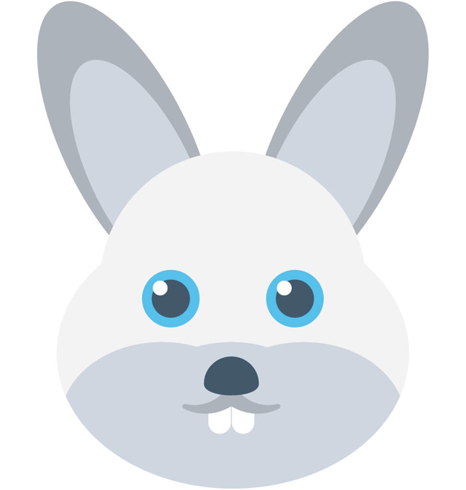 属兔的最佳婚配是什么1975属兔45岁以后运气