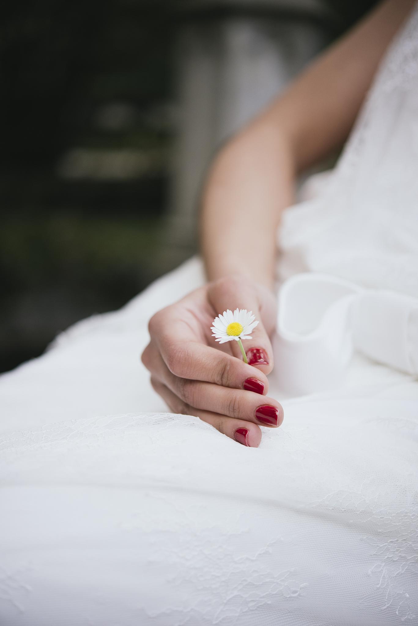 八字合婚结婚吉日查询 2022年狗和龙合婚吉日有吗
